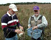Gardening -  Master Naturalists collect seeds for prairie restoration Image